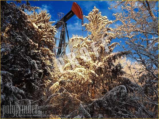 Excursions | Seasonal Golden Snow